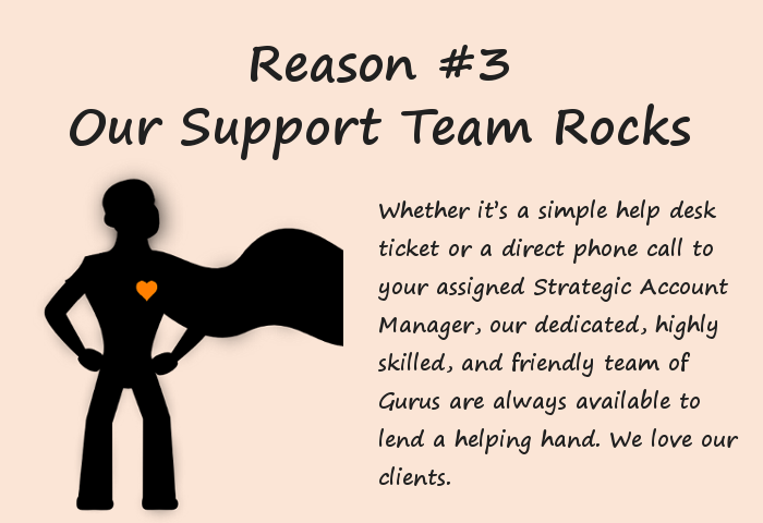 Support Team