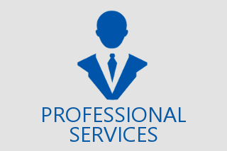 professional_services